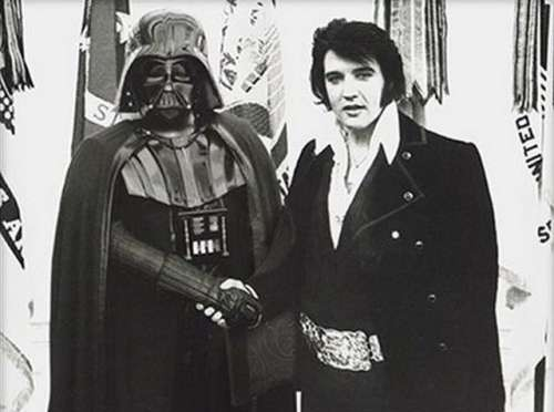 Elvis and vader SEO Facts in Jax
